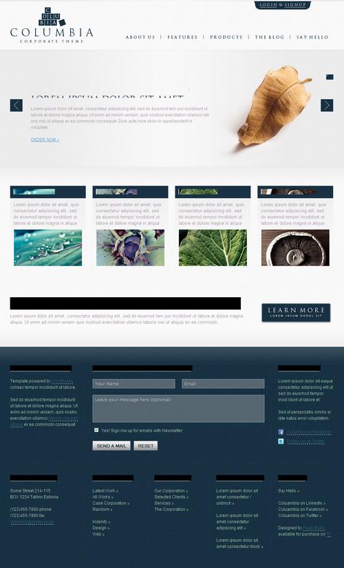 Columbia Corporate WordPress Theme