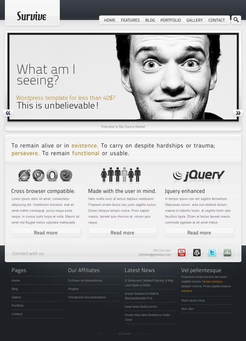 Survive WordPress Theme