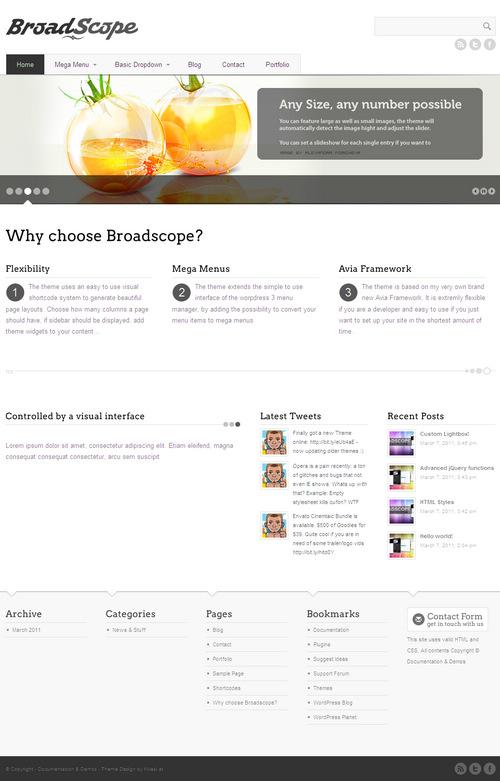 BroadScope Premium WordPress Theme