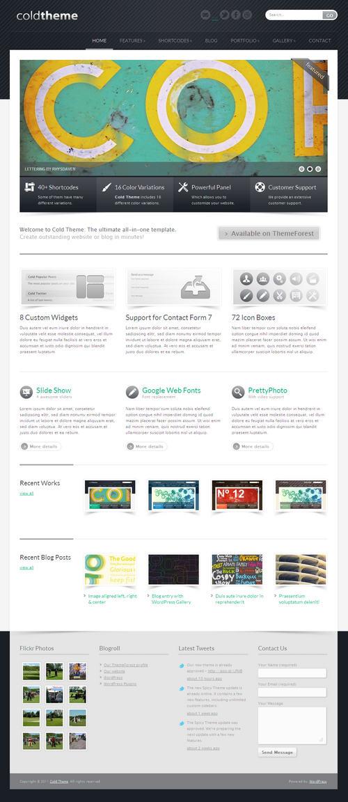 Cold Theme Business Portfolio WordPress Theme