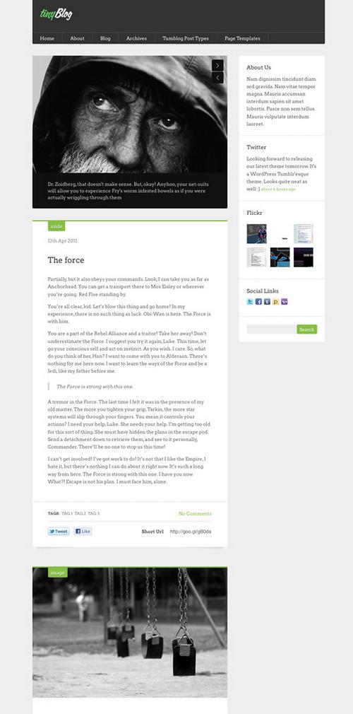 TinyBlog Tumblr-Like WordPress Theme | Best WordPress Themes