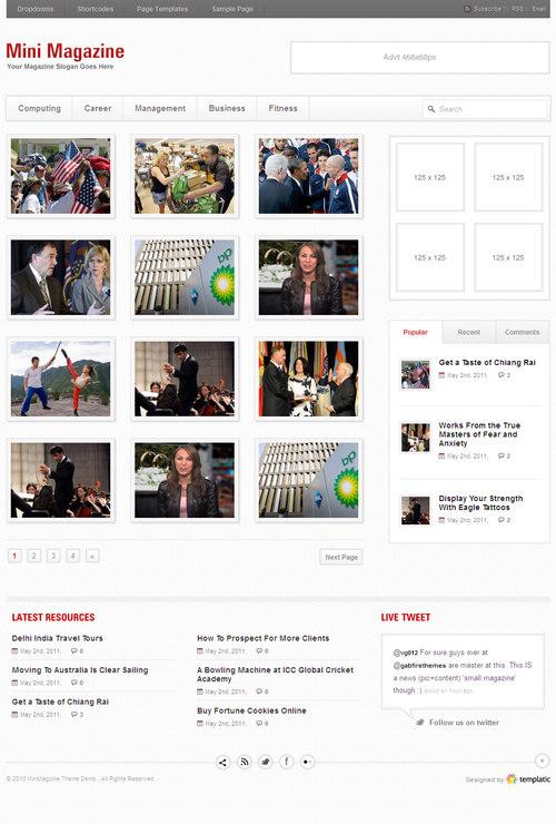 MiniMagazine Light Premium WordPress Theme