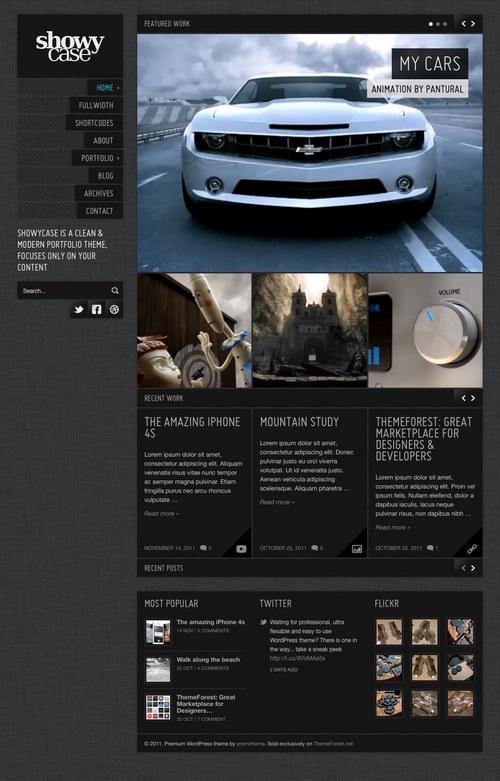 ShowyCase WordPress Theme