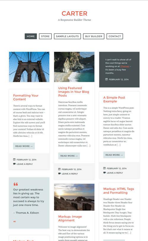 Carter WordPress Theme