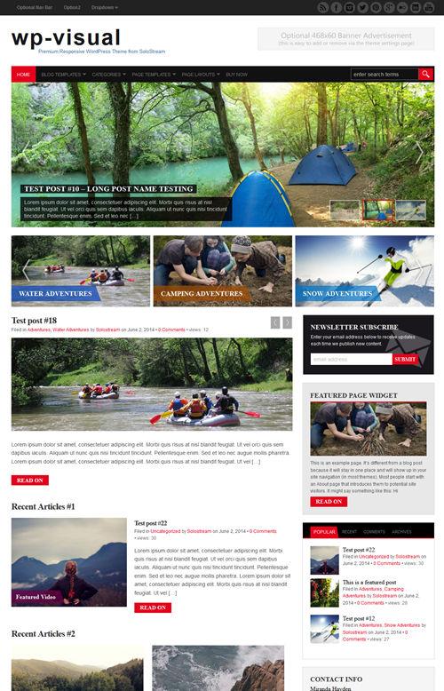 WP-visual WordPress Theme