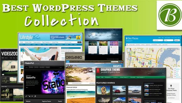 Best & Premium WordPress Themes Collection