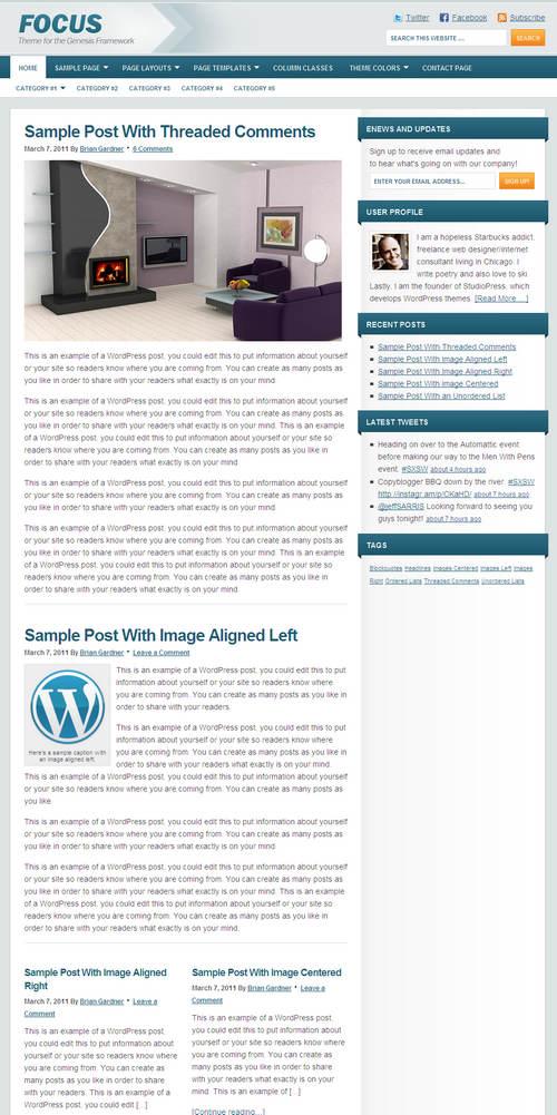 Focus 1.0 Premium WordPress Child Theme