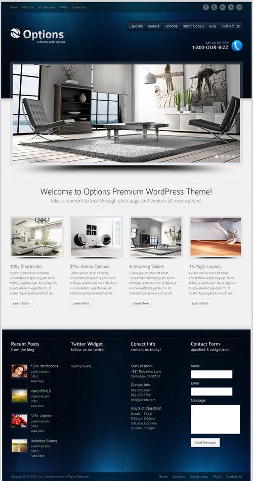 Options WordPress Theme