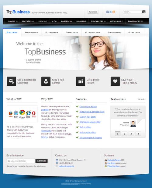 TopBusiness WordPress Theme