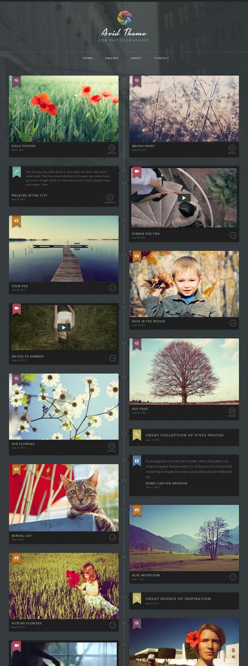 Avid WordPress Theme
