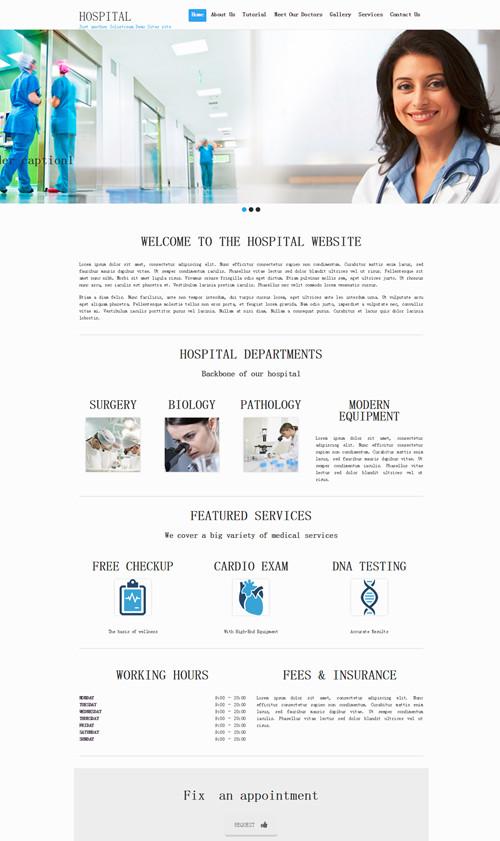 Hospital WordPress Theme