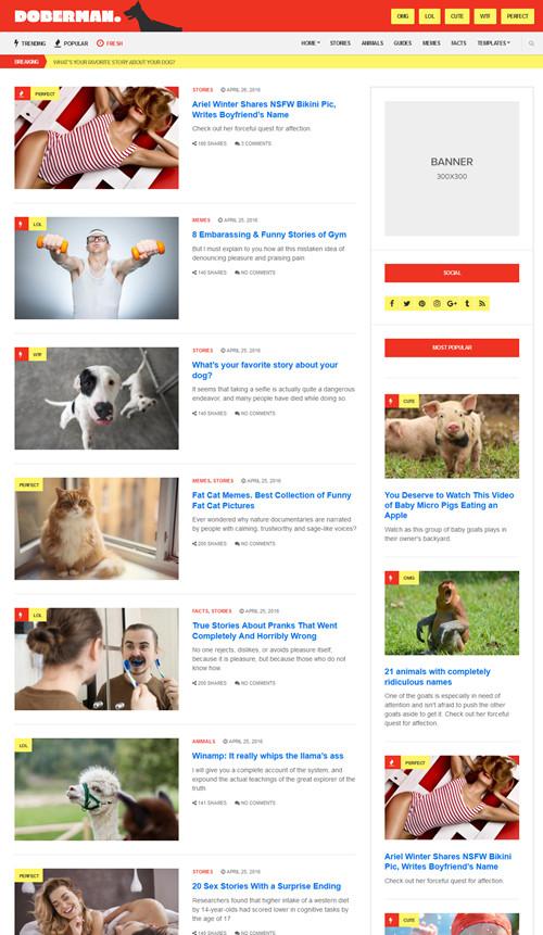 Doberman WordPress Theme